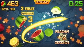 fruit ninja mod apk old version